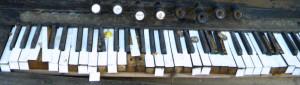 Harmonium1